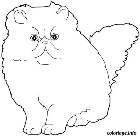 coloriage de chaton a imprimer az coloriage coloriage chat himalayen colorpoint dessin