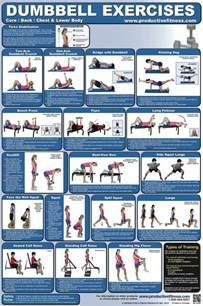 exercise chart dumbbell lower chest back