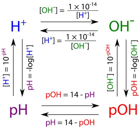 Ph And Poh Worksheet Answer Key