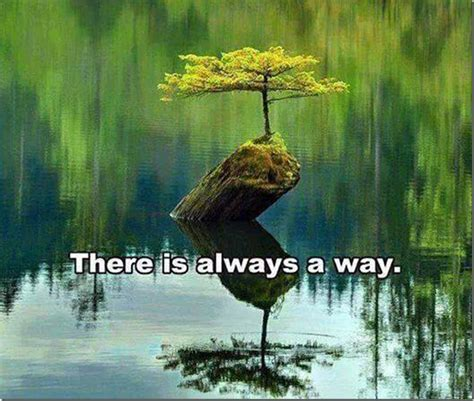 there is a scientifically proven surefire way to avoid there is always a way support for oscar pistorius