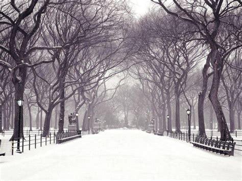 imagenes de invierno winter in the park wallpapers winter in the park stock
