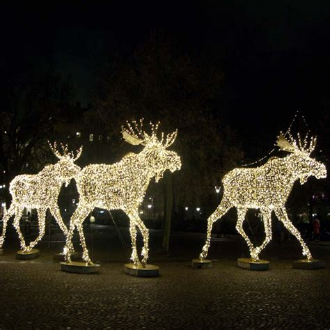 outdoor light up moose lawn reindeer with lights live maigret