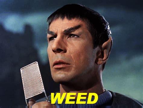 Spock Finder Spock Gif Find On Giphy