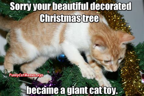 christmas cat memes cat humor 4 page 22 forums at psych central
