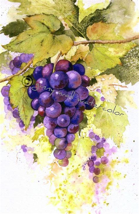 grape cluster matted print by ginny wall beautiful