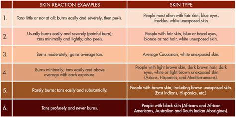 Types Of Tanning Beds by How Do We Get Different Skin Complexions Cosmetics Insight