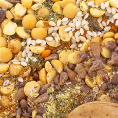 whole grains nuts and seeds grains beans nuts and seeds diagnosis diet