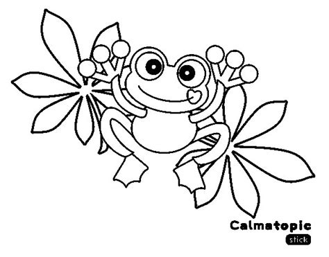 imagenes de ranas bonitas para dibujar rana dibujos para colorear related keywords rana dibujos