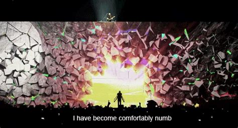 pink floyd the wall comfortably numb concert live pink floyd gig comfortably numb keepechoes
