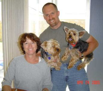 yorkie friends rescue successful yorkie friends rescue adoptions