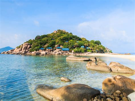 dive in koh tao koh tao scuba diving resort daytrips dive the world