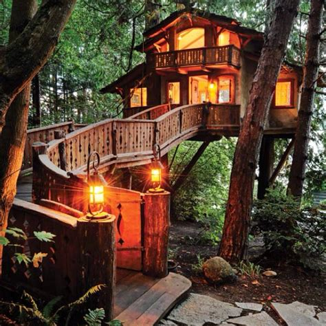 cool tree houses worlds coolest tree house decor pinterest