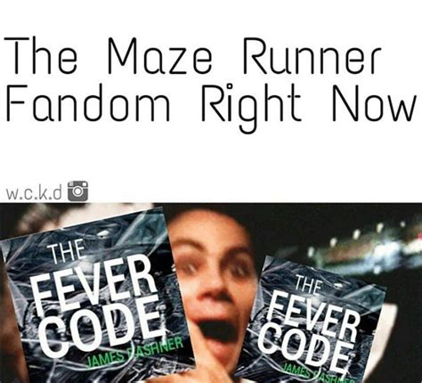 maze runner film order 204 best the maze runner images on pinterest maze runner