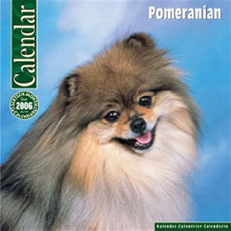 buy pomeranian uk breed calendars for dogs beginning p r calendar figure poster
