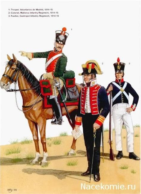 spain since 1812 0340981741 what did spanish military uniforms look like in the napoleonic wars quora