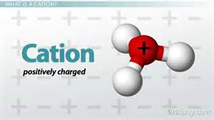 Cation definition amp examples video amp lesson transcript study com