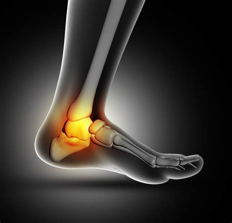 Knee Ankle hip knee ankle and foot progressive sports and