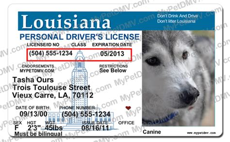 louisiana id template louisiana id template gallery free templates ideas