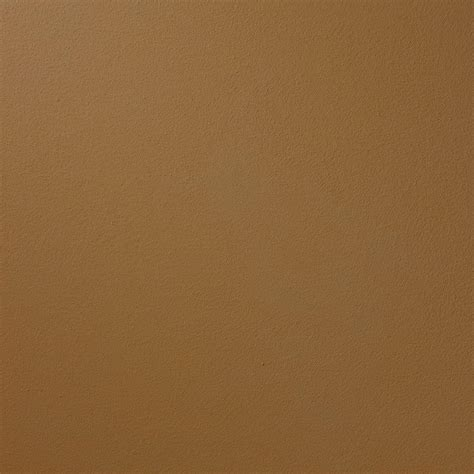 ralph 13 in x 19 in su105 camino suede specialty paint chip sle su105c the home depot