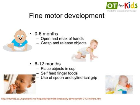 motor skills 12 months ot for introduction to the assessment treatment