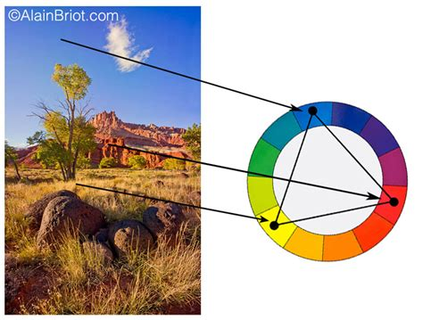triadic colors definition color harmonies in nature photography
