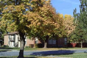 low income apartments in ogden utah city search