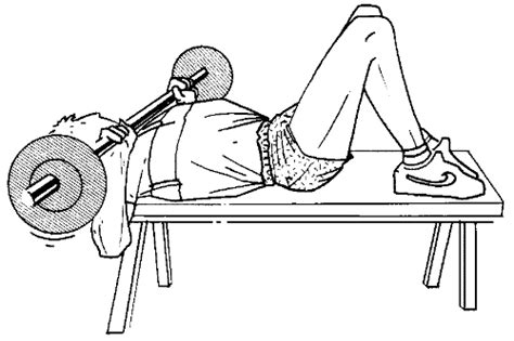 Developper Incliner by File Musculation Exercice D 233 Velopp 233 233 1 Png