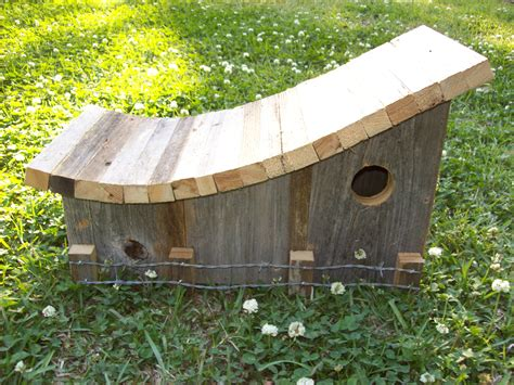 the curvy bird house garden flowers birdhouses pinterest