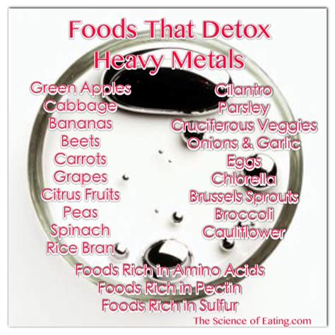 Best Foods For Detoxing Heavy Metals foods to help health issues