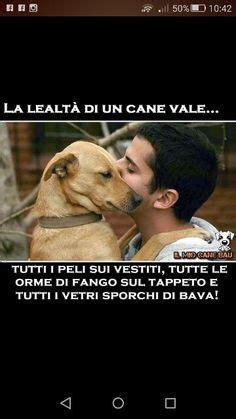 niente di piu testo frasi bellissime sui cani salviamo gli animali