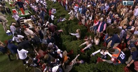 auburn fans in bushes auburn beats alabama and these storming fans get stuck in