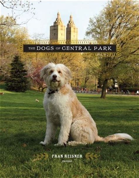 central park puppies this week in new york
