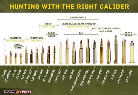 pistol bullet caliber sizes chart use this rifle caliber chart to pick the right ammo for
