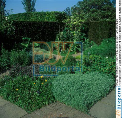 Homöopathie Bei Pflanzen 1703 by Details Zu 0003160373 Heilkr 228 Utergarten