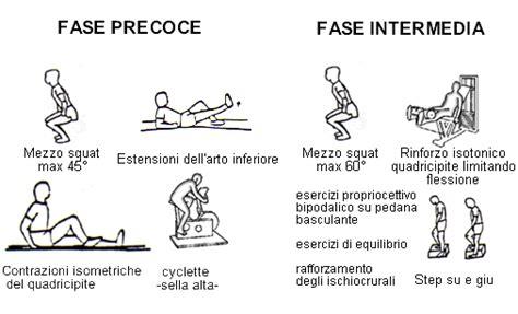 Corno Posteriore Menisco Interno by Riabilitazione Dopo Rottura Menisco