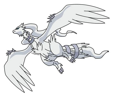 pokemon coloring pages reshiram 47 best reshiram images on pinterest gifs video game