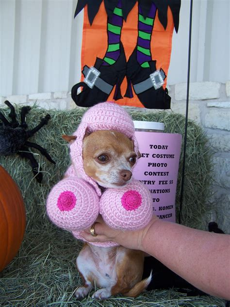 Pet Sweepstakes - we have a winner for our halloween pet photo contest new braunfels feed supply