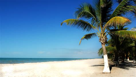 Kingston Jamaica Search Jamaica Real Estate Jamaica Property Listings House Autos Post