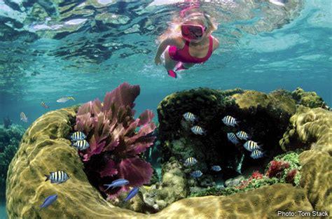 catamaran coral reef snorkel bermuda key largo snorkeling tours to coral reefs at john