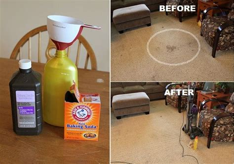 1000 images about diy carpet cleaner on