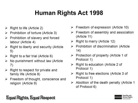 the human rights act delivery notes these slides contain all the information