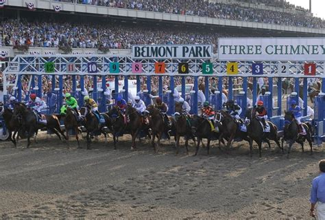 How Much Money Did Secretariat Win - belmont stakes 2013 possible contenders lady and the track