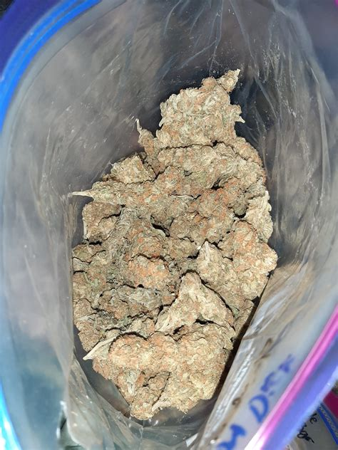 canariasweedcom comprar marihuana en las palmas de gran canaria en mano  envios toda
