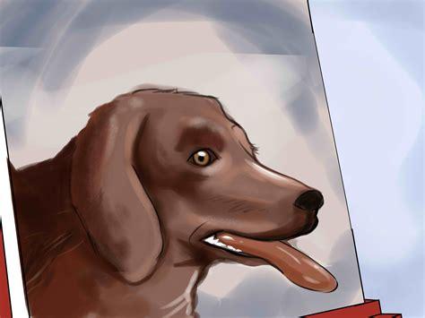 cmo pintar 27 pasos con fotos wikihow c 243 mo pintar el retrato de un perro 14 pasos con fotos