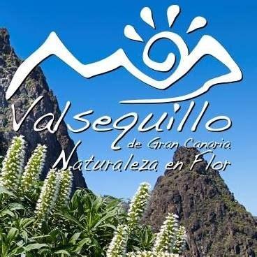 oficina de turismo gran canaria oficina de turismo de cruz de tejeda home facebook
