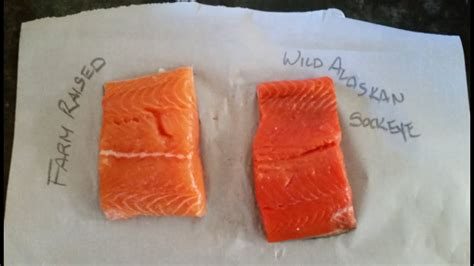 what color is it salmon isn t the right color and tastes bad