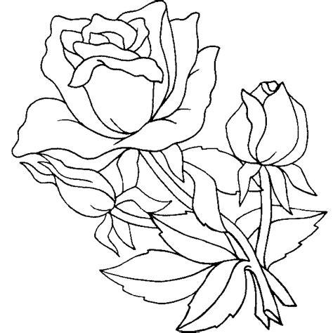 imagenes para pintar de flores dibujos de rosas para colorear y pintar