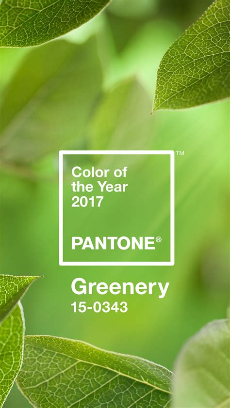 color of the year 2017 about us pantone digital wallpaper