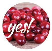 can dogs eat dried cranberries can my eat that modern magazine