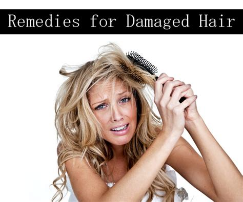 best shoo for damaged hair 2014 how to make dry damaged hair feel healthy again